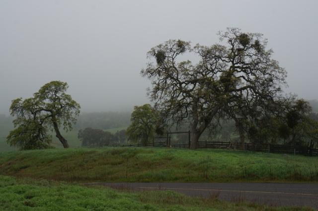 CA Highway 4