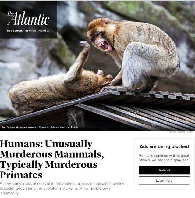 human-violence